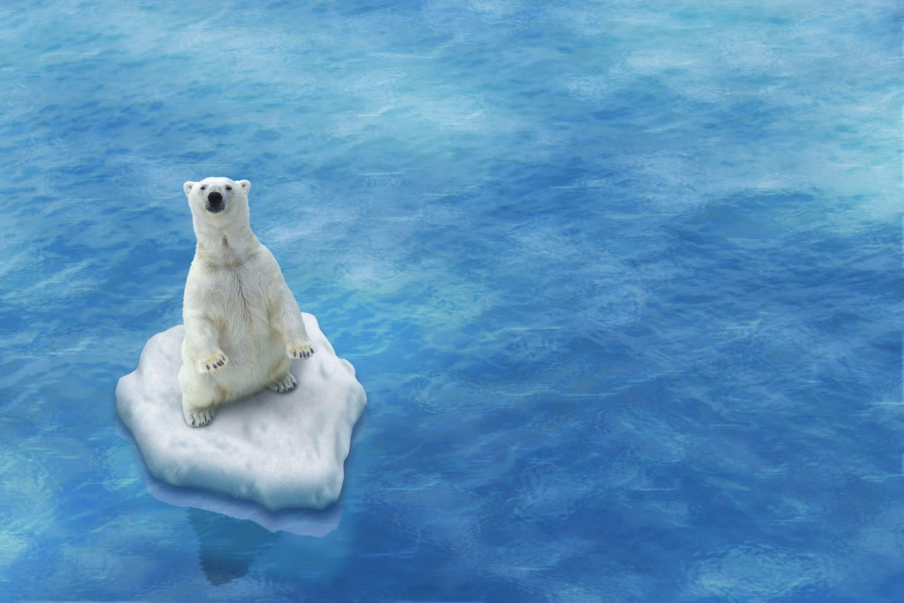 Understanding Global Warming and Policy Options to Combat It